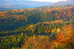 The Ore Mountains mixed forests Stock Photo