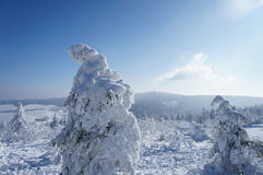 The Ore Mountains in winter Royalty Free Stock Photo