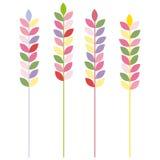 Orecchie colorate sorgente Fotografia Stock