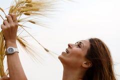 Orecchie commoventi del grano della mano della donna Fotografia Stock