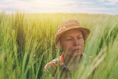 Orecchie d'esame del grano dell'agricoltore femminile nel campo Fotografia Stock