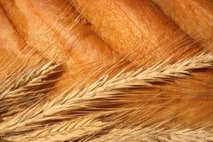 Orecchie del frumento sul pane Fotografia Stock