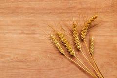 Orecchie del grano dopo il raccolto Fotografie Stock Libere da Diritti