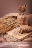 Orecchie del grano e del mais Fotografia Stock Libera da Diritti