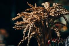 Orecchie del grano su un fondo nero Fotografie Stock