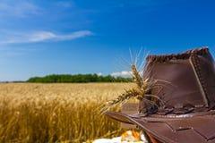 Orecchie del grano sul cappello dell'agricoltore Immagini Stock Libere da Diritti