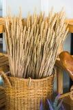 Orecchie della merce nel carrello del grano Fotografie Stock Libere da Diritti