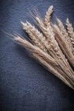 Orecchie della segale del grano sulla versione nera di verticale del fondo Immagini Stock Libere da Diritti
