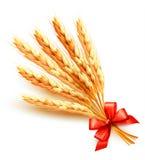 Orecchie di frumento con l'arco rosso Immagine Stock
