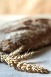 Orecchie di grano e di intero pane del grano Fotografia Stock