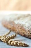 Orecchie di grano e di pane integrale Fotografia Stock Libera da Diritti