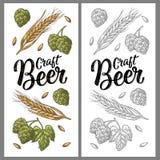Orecchie di orzo, delle foglie e dei coni di incisione di luppolo Iscrizione della birra del mestiere illustrazione di stock