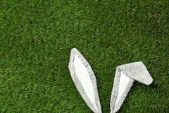 Orecchie divertenti del coniglietto di pasqua su erba verde, vista superiore immagine stock