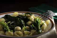Orecchiette with Cime di Rapa. (Rapini), a Traditional Dish from Apulia (Southern Italy royalty free stock image
