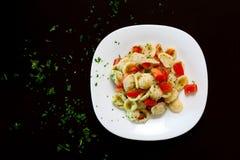 Orecchiette Fresh Tomato Stock Image