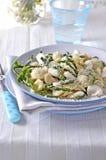 Orecchiette pasta Närbild Royaltyfri Foto