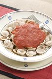 Orecchiette pasta with tomato sauce Royalty Free Stock Image