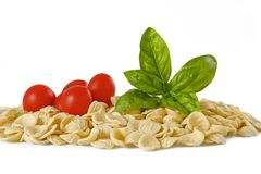 Orecchiette tomatoes and basil Royalty Free Stock Images