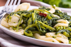 Orecchiette with turnip tops. Stock Image
