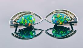 Orecchini d'argento sotto forma degli occhi umani con della la st colorata multi Immagine Stock Libera da Diritti