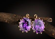 Orecchini dei gioielli dell'oro con le gemme sul ramoscello, fondo scuro Immagine Stock