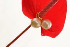 Orecchini della perla sull'anturio Immagini Stock