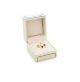 Orecchini di lusso in scatola leggera isolata Fotografia Stock