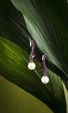 Orecchini luminosi con le perle Immagini Stock
