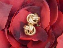Orecchini sui petali Fotografia Stock Libera da Diritti