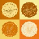 Orecchio del grano nel telaio per il logo di agricoltura Fotografia Stock