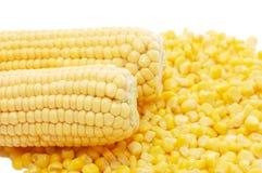 Orecchio di mais fresco e di cereale in scatola Fotografie Stock Libere da Diritti
