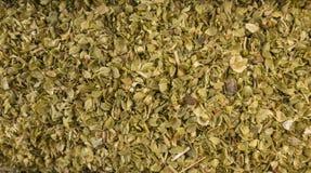 Oreganoörtbakgrund Naturlig krydda textur royaltyfri fotografi