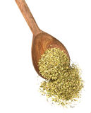 Oregano Royalty Free Stock Photos