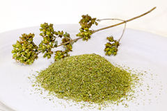 Oregano Fotografia Stock