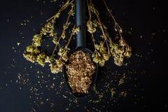 Oregano badyl i rozdrobniący wysuszony oregano Fotografia Stock