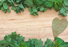 Oregano, basil and bay leaf. Over wood table royalty free stock photography