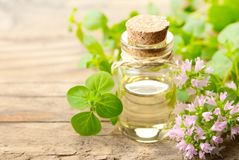 Oregano blossom essential oil and fresh oregano flowers on the wooden board royalty free stock photography