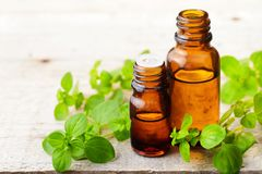Oregano essential oil in the amber glass bottle and fresh oregano leaves. Oregano essential oil in the amber glass bottle, on the wooden board Royalty Free Stock Photo