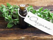 Oregano essential oil. Essential oil bottle of oregano herb with fresh oregano leaves Royalty Free Stock Image