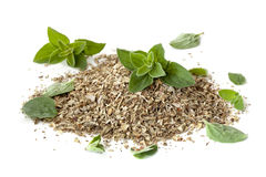 Oregano Fresh and Dried Isolated on White Stock Photography