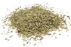 Oregano herb Royalty Free Stock Image