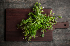 Oregano on the kitchen board on the old dark table Royalty Free Stock Photos