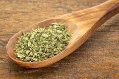 Oregano leaf Stock Image