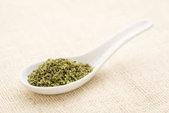 Oregano leaf Stock Images