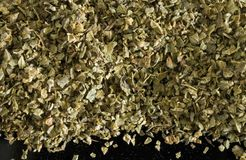 Oregano macro Stock Images