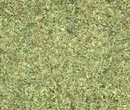 Oregano (Origanum vulgare. ) herb aka wild marjoram or sweet marjoram stock images