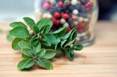 Oregano and Pepper. Fresh oregano and a bottle of mixed pepper on the wooden kitchen desk Royalty Free Stock Photography