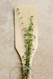 Thyme on spatula spoon Stock Photography