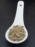 Oregano spice. On a ceramic spoon against black background Stock Images