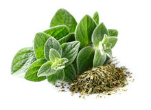 Oregano spice Royalty Free Stock Photo